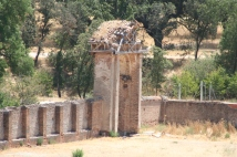 Arco del Campo del Palacio
