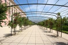 Jardín de Palacio (2)