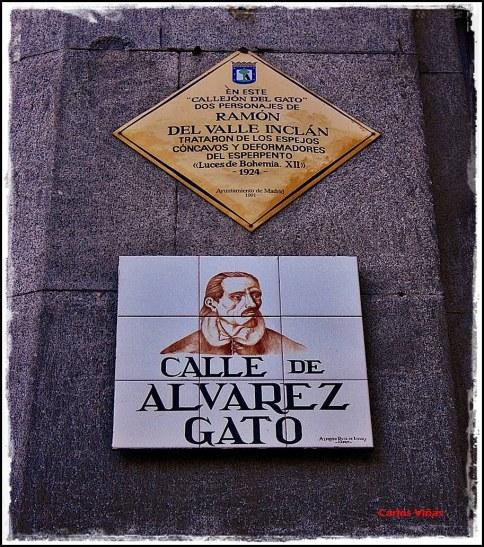Alvarez Gato.jpg