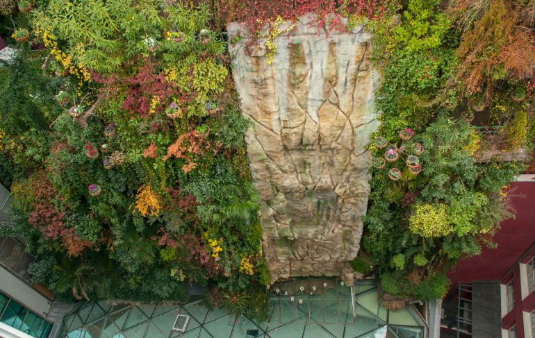 Curiosidad los 2 jard nes verticales de madrid un gato for Historia de los jardines verticales